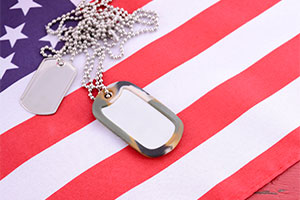 Celebrate Veterans Day…Every Day