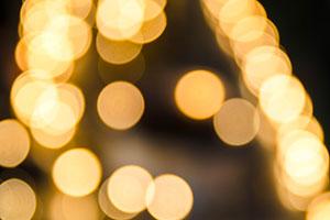 November Lights and Gulfport Family Fun