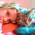 The Family Pet: Coping with Loss of a Beloved Dog or Cat
