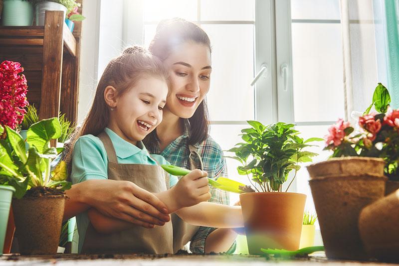 Garden School: Teaching Academics while Gardening