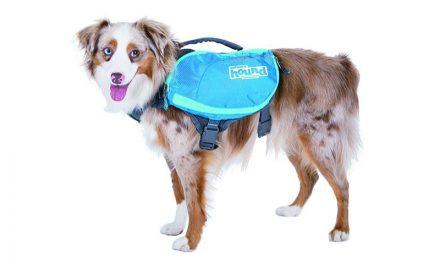 Random Stuff That Rocks: DayPak for Dogs by Outward Hound
