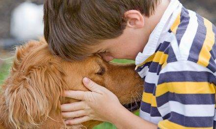 Fixing Fido: Do the Right Thing for Your Family Pet