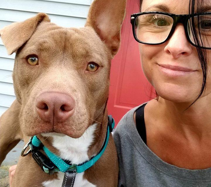 Hernando Animal Shelter: Every Pet Deserves Love
