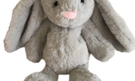 Random Stuff That Rocks: Xander Bunny