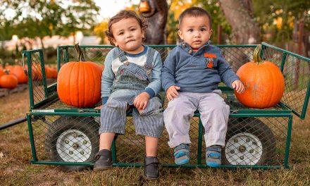 Mitchell Farms Pumpkin Patch
