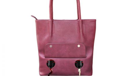 Random Stuff That Rocks: Porto Vino Double Pour Tote