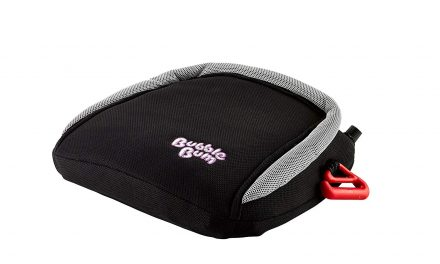 Random Stuff That Rocks: BubbleBum Booster Seat