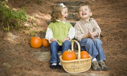 Fall Family Festivals