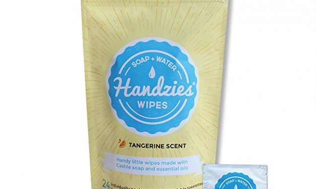 Random Stuff That Rocks: Handzies Wipes