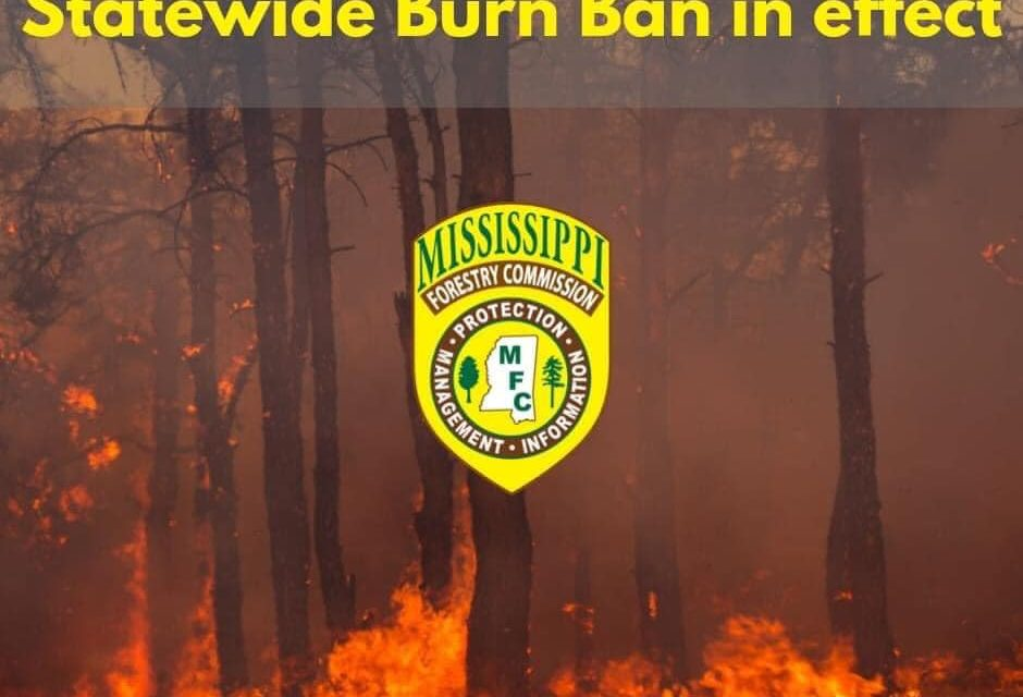 Statewide Burn Ban in Effect