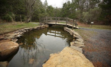 Trails Remain Open at Clinton Community Nature Center
