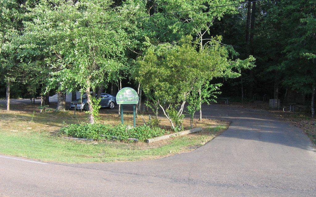 Simmons Arboretum is Open