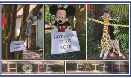 "Outdoor ""Zoo"" Open for Family Entertainment This Week"