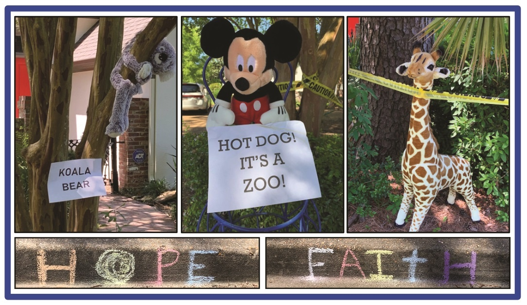 """Outdoor """"Zoo"""" Open for Family Entertainment This Week"""