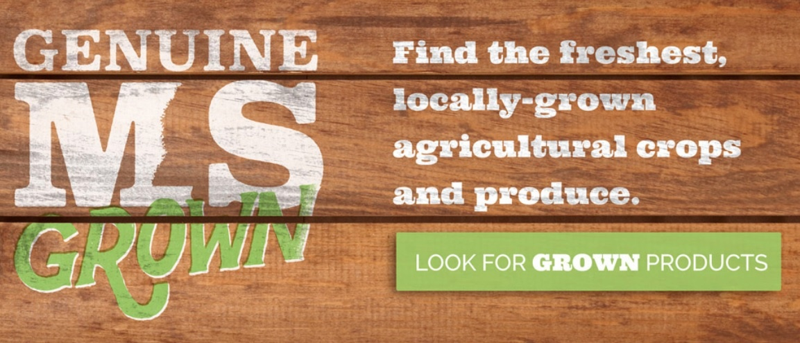Stronger Food Supply Chain in MS