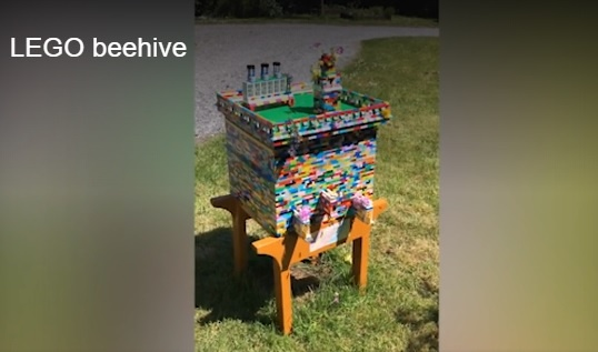 Man Shares His Lego Beehive