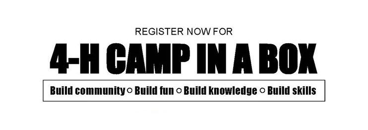 4-H Offers Camp in a Box