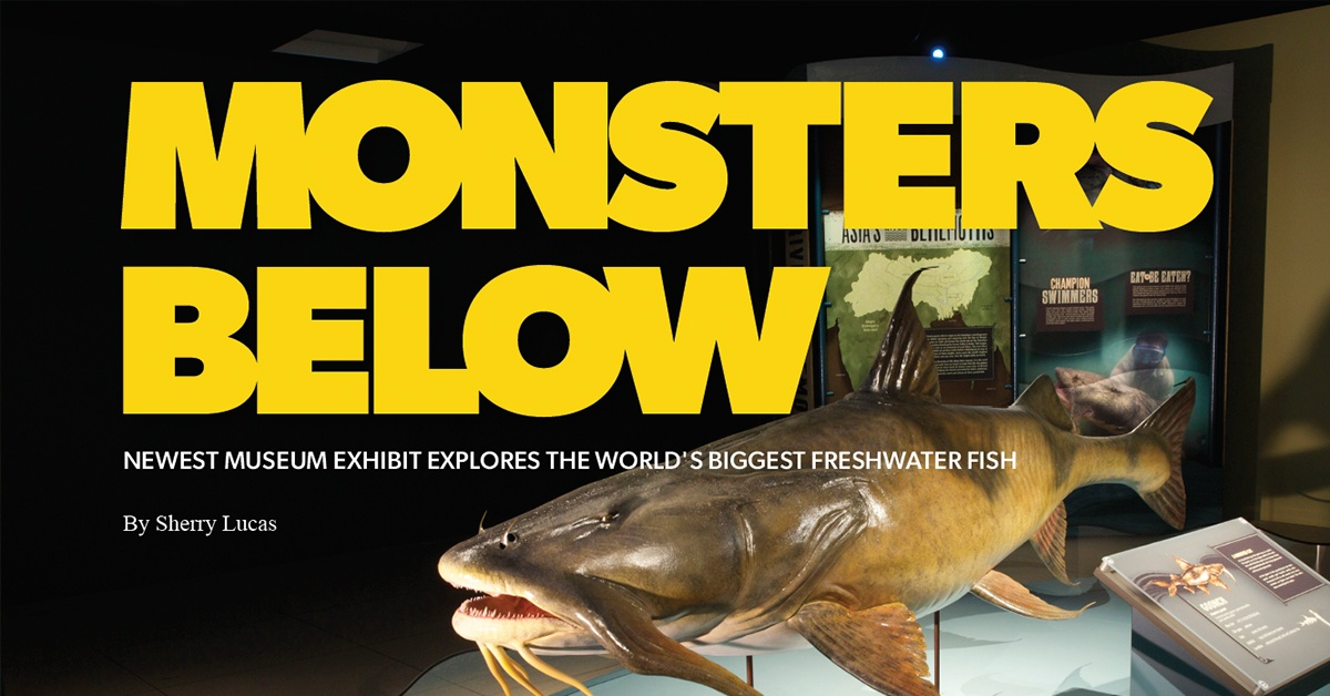 """National Geographic """"Monster Fish"""" Exhibition in Jackson"""