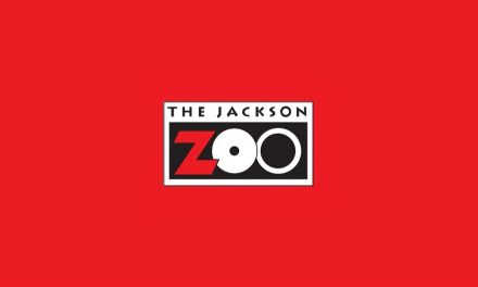 Treats Inspired by the Jackson Zoo Keepers