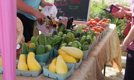 Farmers Market This Thursday in Brandon
