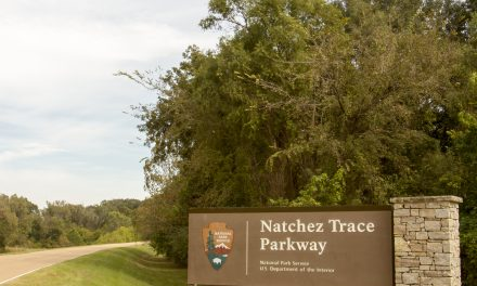 Adventure Close to Home: The Natchez Trace Parkway