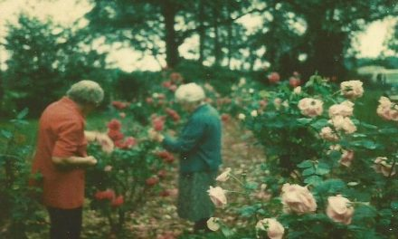 South Mississippi Memories: In the Garden