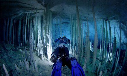 TN Aquarium offering Ancient Caves 3D screenings April 23-25