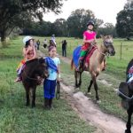 Falling for Fall Family Traditions in South Mississippi